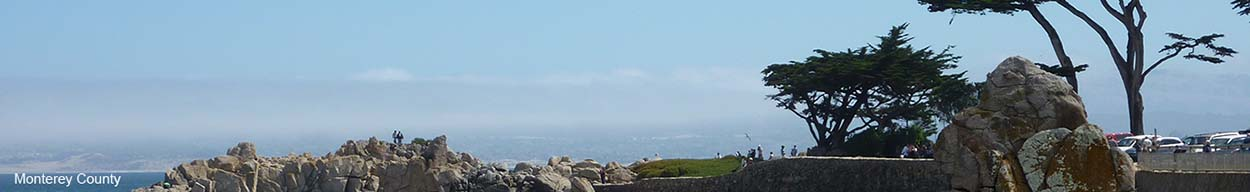 Banner Image of Monterey County Beach