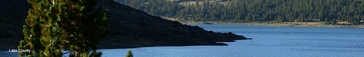 Banner image of lake and pine tree in Lake County.